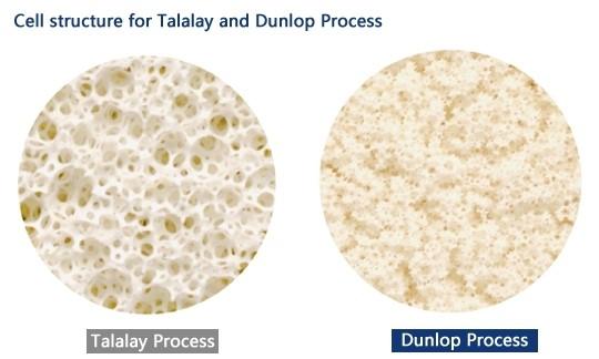 Dunlap vs Talalay mattress